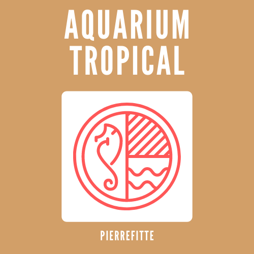 Aquarium tropical pierrefitte