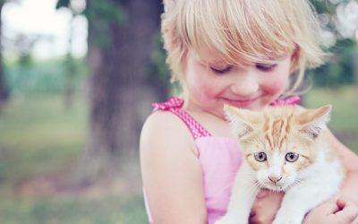 De bonne raison d'adopter un animal pour votre enfant